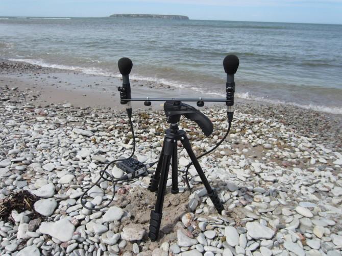 Field recording in Gotland